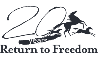 Return to Freedom Store
