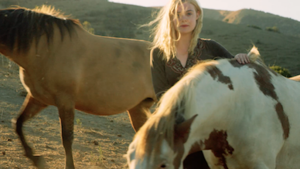 Elle Fanning Wild Horses Return to Freedom