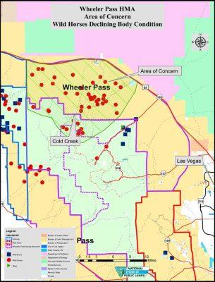 Wheeler Pass Horse Management Area