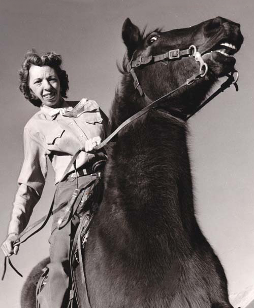 Wild Horse Annie
